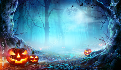 Fotomurales - Jack O' Lanterns In Spooky Forest At Moonlight - Halloween
