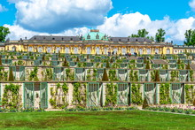 Fotomurales - Sanssouci palace and park in spring, Potsdam, Germany